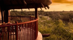 Disney's Animal Kingdom Villas - Jambo House